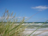 Strandansicht bei Wellen