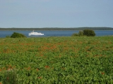 Blick übers Land mit Schiff im Hintergrund