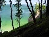 Meeresblick durch Waldrand betrachtet